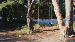 Lysaght Lodge, Case vacanze  Coles Bay - big - 9
