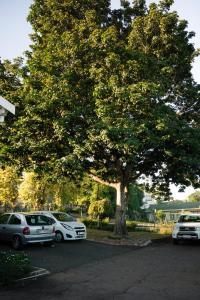 Home From Home B&B, Panziók  Pietermaritzburg - big - 27