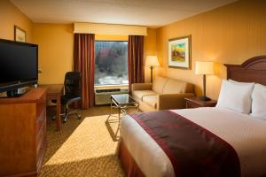 DoubleTree by Hilton Biltmore/Asheville, Hotels  Asheville - big - 21