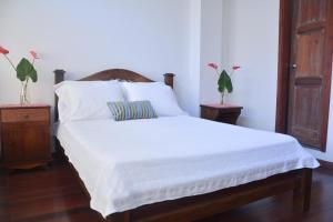 Casa Hotel Jardin Azul, Hotely  Cali - big - 17