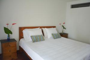 Casa Hotel Jardin Azul, Hotely  Cali - big - 20