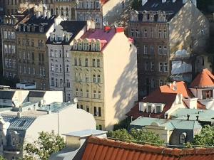 Apartment Veronika 2, Apartments  Karlovy Vary - big - 7
