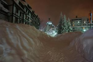 Apartments Suncani Vrhovi Kopaonik, Apartments  Kopaonik - big - 30