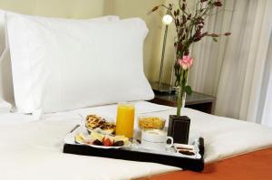 Regente Palace Hotel, Отели  Буэнос-Айрес - big - 32