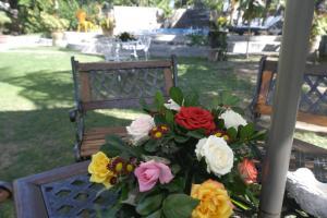 Rodrigues Coco Villa, Guest houses  Port Mathurin - big - 17