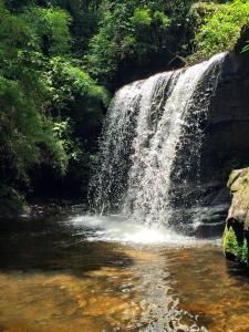 Refúgio Mantiqueira, Chaty v prírode  São Bento do Sapucaí - big - 77