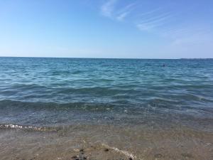 У моря