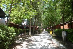 Campeggio Boscoverde, Campsites  Torre del Lago Puccini - big - 82