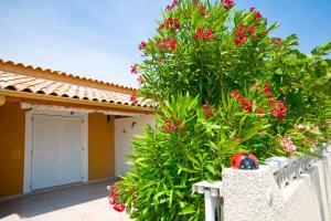 Holidayland, Villaggi turistici  Narbonne-Plage - big - 24