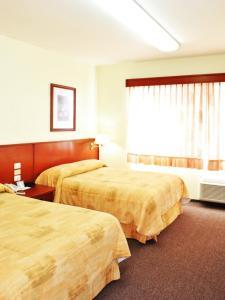 Hotel Marcella Clase Ejecutiva, Hotely  Morelia - big - 32