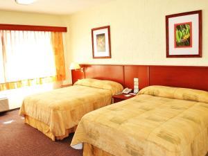 Hotel Marcella Clase Ejecutiva, Hotely  Morelia - big - 5