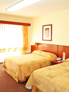 Hotel Marcella Clase Ejecutiva, Hotely  Morelia - big - 33