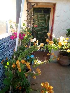 Riad Malak, Bed & Breakfasts  Meknès - big - 110