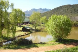 Wilgewandel Holiday Farm & Day Restaurant, Bed & Breakfasts  Oudtshoorn - big - 46