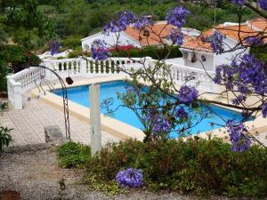 Villa La Foca, Holiday homes  Orba - big - 11