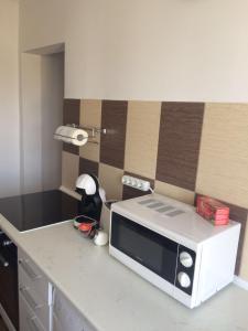 Sophia Apartment, Apartments  Iaşi - big - 21