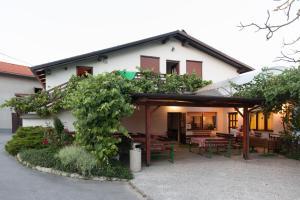 Janezinovi House