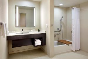 King Studio Suite with Roll-In Shower - Disability Access