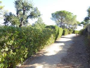 Ferienhaus an der Cote d'Azur, Nyaralók  Grimaud - big - 22