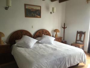 Posada del Virrey, Hotels  Tequisquiapan - big - 6