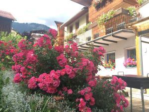 Hotel Garni Enrosadira, Hotely  Vigo di Fassa - big - 73