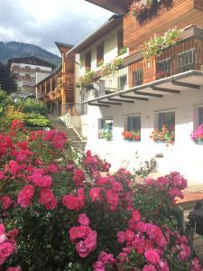 Hotel Garni Enrosadira, Hotely  Vigo di Fassa - big - 132
