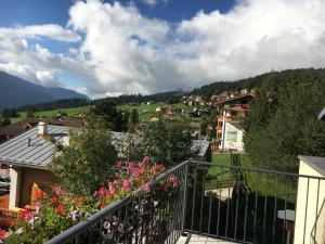 Hotel Garni Enrosadira, Hotely  Vigo di Fassa - big - 54