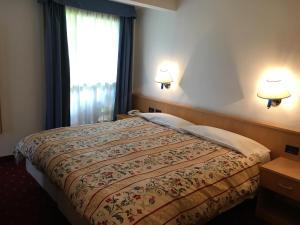 Hotel Garni Enrosadira, Hotely  Vigo di Fassa - big - 24