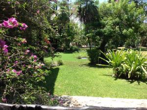 Casa Armonia, Apartmány  Playa del Carmen - big - 30