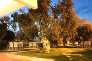 Apart Hotel Ege, Penzióny  Ayvalık - big - 56