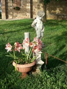 Casa Vacanze Paradiso, Prázdninové domy  San Lorenzo Nuovo - big - 12