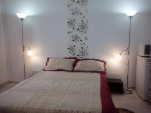 Apartment Camelia