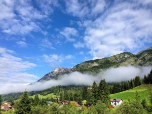 Alpin Park, Bed & Breakfast  Sappada - big - 18