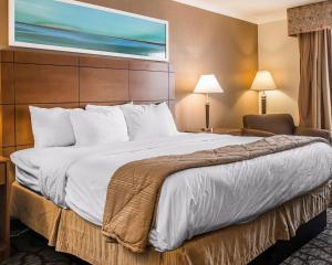 Clarion Hotel Detroit Metro Airport, Hotel  Romulus - big - 11