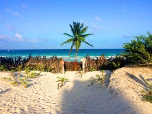 Paradise in Tulum - Villas La Veleta - V1, Дома для отпуска  Тулум - big - 53