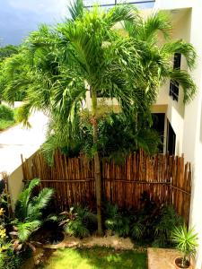 Paradise in Tulum - Villas la Veleta - V2, Prázdninové domy  Tulum - big - 3