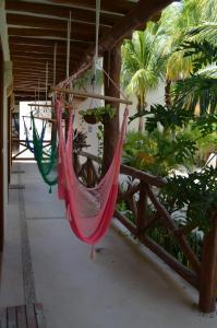 Hotel Casa Iguana Holbox, Hotely  Holbox Island - big - 21