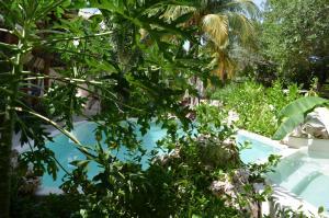 Hotel Casa Iguana Holbox, Hotely  Holbox Island - big - 56