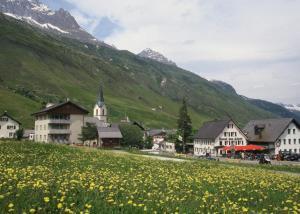 Hotel des Alpes - Realp