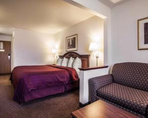 Quality Inn & Suites Eldridge Davenport North, Hotel  Eldridge - big - 5