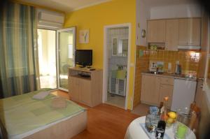 Rooms & Apartments Villa Anka, Апартаменты  Тучепи - big - 42