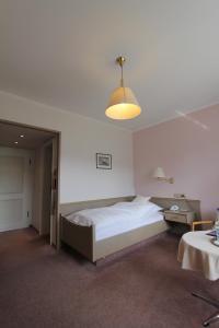 Hotel Gasthaus Tröster, Hotely  Schmallenberg - big - 19