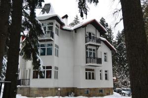 Villa Elena, Holiday homes  Borovets - big - 33