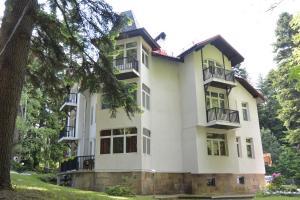 Villa Elena, Holiday homes  Borovets - big - 32