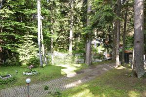 Villa Elena, Holiday homes  Borovets - big - 30