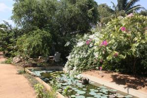 Guruge Villa Habarana, Penziony – hostince  Sigiriya - big - 22