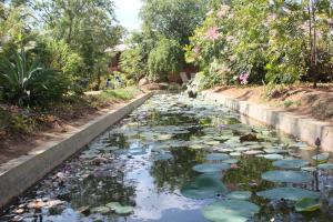 Guruge Villa Habarana, Locande  Sigiriya - big - 21