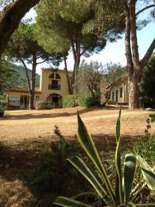 Appartamenti Lacona - AbcAlberghi.com