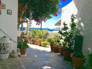 Manos Studios, Apartments  Platis Yialos Mykonos - big - 32