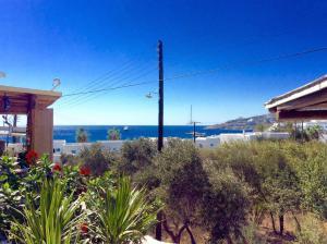 Manos Studios, Appartamenti  Platis Yialos Mykonos - big - 37